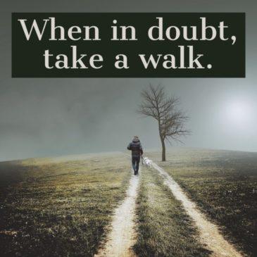 When In Doubt, Take A Walk