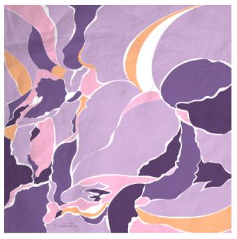 Illustrated Silk Scarves