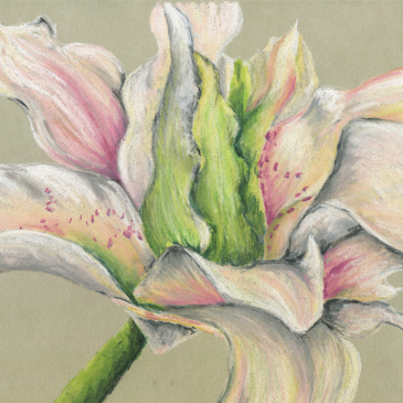 Verde Center Pastel Painting
